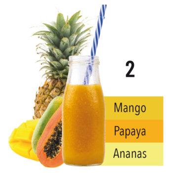 2_mango_ananas_papaya