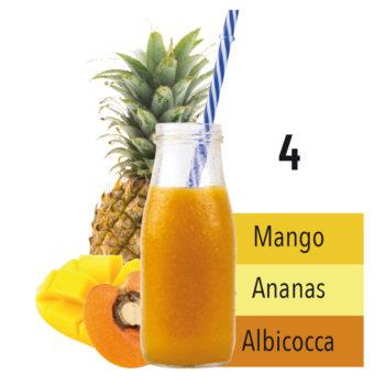 4_ananas_-albicocca-e-mango